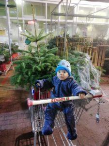 Jarouš a nákup stromečku